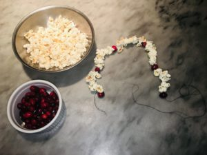 Make a Popcorn and Cranberry Garland to Improve  Fine Motor Skills